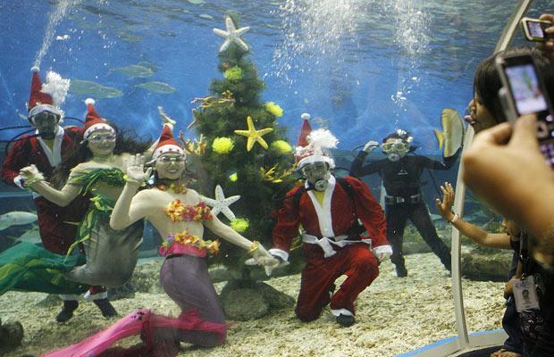 Daivings.lv Ziemassvētki zem ūdens
