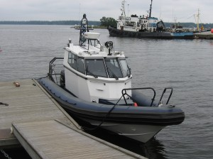 Boomeranger A-3500