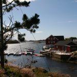 Daivings Norvēģijas fjordos