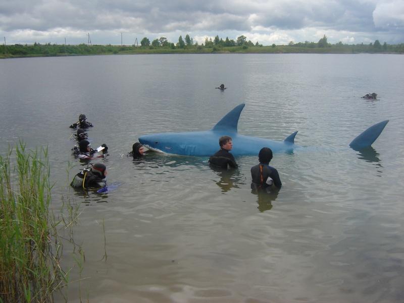 Haizivs Dolomīta karjerā ielaišanas brīdī